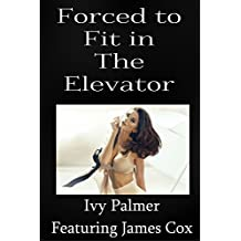 Forced to fit in the elevator (Violent size sex story)