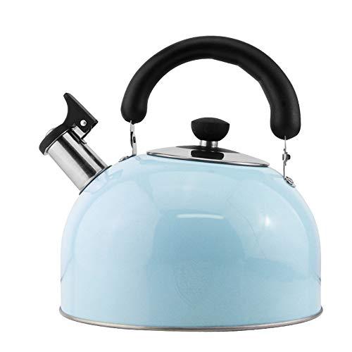 WXH Teapot Edelstahl Teekanne/Poliverner kleine Kaliber Großkaliber große Kapazität fein gemachte Filter-Familienhotel Fine Coffee oder Teapot,Blue