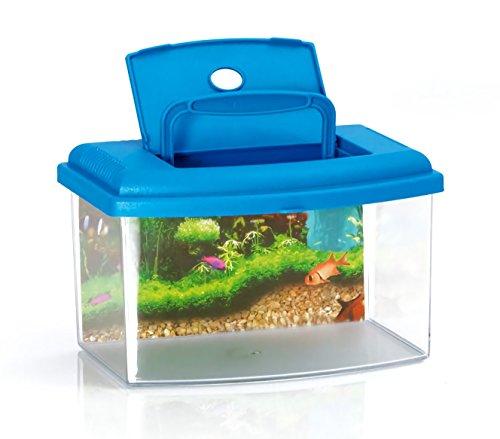 MEDIA WAVE store 10636 Acquario Rettangolare in plastica Rigida 5,5 l con Coperchio 28x20x17 cm (Azzurro)