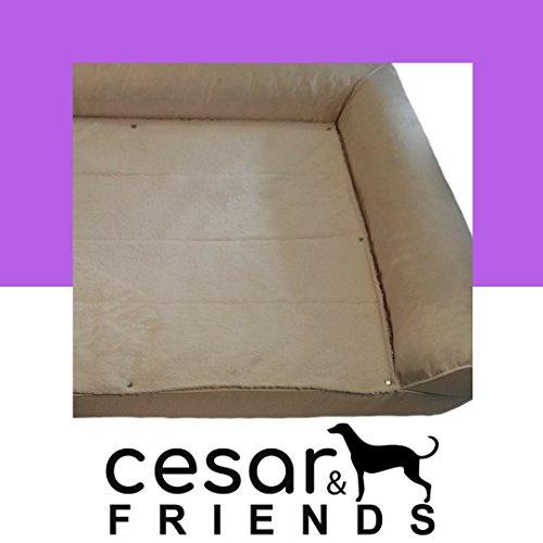 Orthopädisches Hundebett Cesar&Friends, Orthopädische Hundematratze Omega XXL, Ecru, Größe 120x80x25cm mit Memory Visco-Schaummatratze, Bezug abnehmbar und bei 30 Grad waschbar, wasserfest