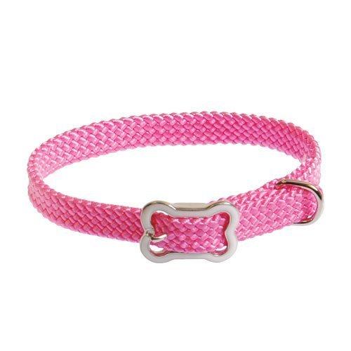 coastal-pet-products-inc-8501-sunburst-collar-with-bone-buckle-10-inch-x-3-8-inch-pink-by-coastal-pe