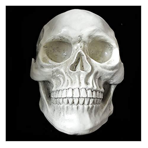 Halloween Liefert Neuheit Kreatives Spielzeug Horror Parodie Schädel Requisiten Möbel Dekoration Länge 23 cm Breite 15 cm Höhe 15 cm