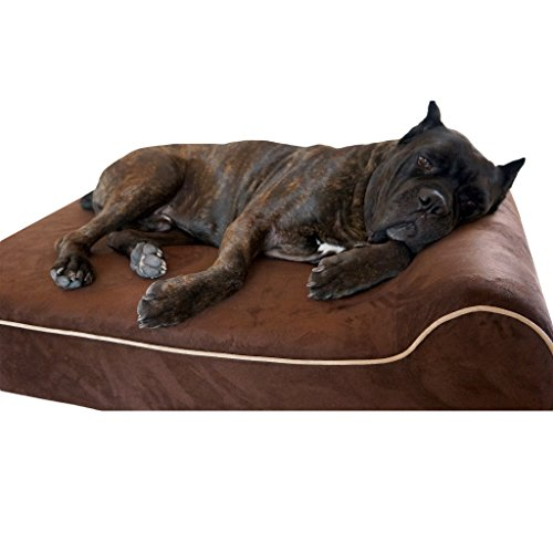 Bully Betten Orthopädische Hundebett aus Memory-Schaum-Wasserdicht Nackenrolle Betten für Große und Extra Große Hunde-Langlebig Pet für Big Hunde, Large, Schokoladenbraun (Bett Extra Großes Orthopädisches)