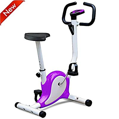 Popamazing Exercise Bike Indoor Aerobic Fitness Bikes Cardio Training Spinning Bike (Purple)