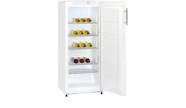 Kühlschrank Vs3171 : Exquisit c a rvs kühlschrank l silber amazon