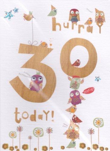 Handgefertigte Eule 30. Geburtstag Karte