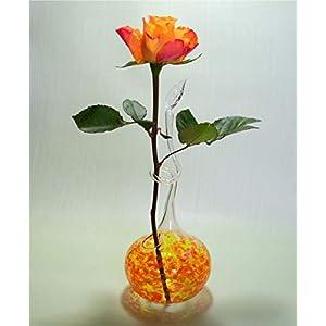 Rosenvase Einblumenvase Glas Lauscha Einschmelzung Orange Vase für Rosen
