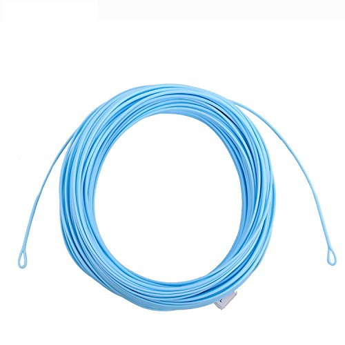 Maxcatch AVID Serie Salzwasser Schwimmend Fliegenschnur 90 FT Sandig Blau Farbe mit 2 geschweißter Loops Fliegenfischen Linie(WF8F/WF9F) (Sandig/Blau, WF8F)