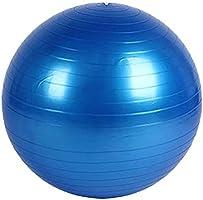 TESITE Yoga Bal Explosie-Proof Fitness Bal Met Snelle Pomp (Blauw 85cm)