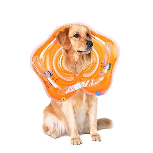 Hundeschwimmweste, Schwimmtraining I Mitwachsende Schwimmhilfe I Schwimmring, Schwimmsitz Schwimmhilfe,Haustier Float, Schwimmreifen für Hunde (Orange)