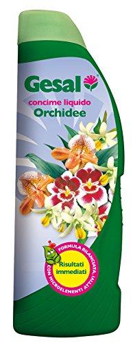gesal-concime-liquido-x-orchidee-ml800500-confezione-da-12pz