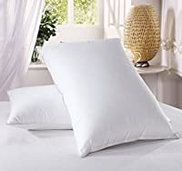 2x & 4x White Duck Feather and Down Pillow Anti Dust Mite Hypoallergenic Soft Comfortable Hotel Quality Pillow Only