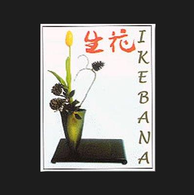 Ikebana (Cultura Floral)