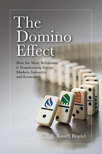 The Domino Effect (English Edition) eBook: E. Russell Braziel ...
