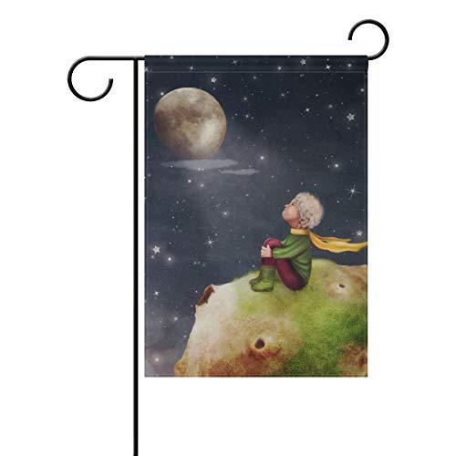 MyDaily Petit Prince Rose Planet décoratifs Double Face Jardin Drapeau 12 x 45,7 x 71,1 x 101,6 cm, Polyester, Multicolore, 12 x 18 inch