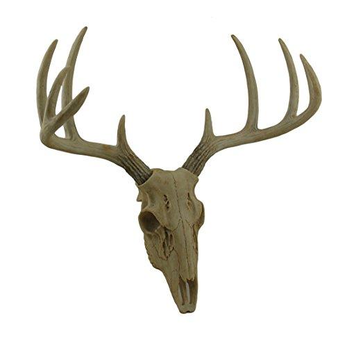 Poco Bucky montado en la pared sintética acabado envejecido ciervo calavera y cuernos 15inch