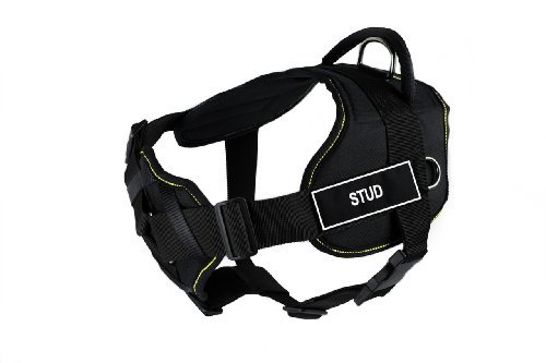 dean-tyler-32-to-107cm-stud-fun-harness-with-padded-chest-piece-large-black-with-yellow-trim