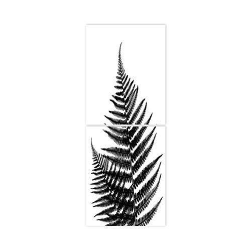 Boubouki - Wasserabweisende Fliesenaufkleber für Bad und Küche - Farn Poster - 20x25cm, Transparent -