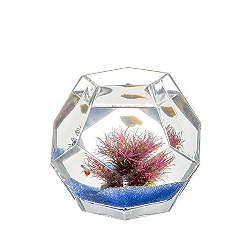 REWQ Mini-Aquarium, kreative Persönlichkeit Glasaquarium, kleines Aquarium im Desktop-Wohnzimmer-Purple