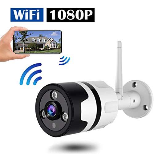 TriLance Drahtlose Überwachungskamera im Freien, wasserdichte WiFi-IP-Kamera mit FHD 1080P, 360 ° Weitwinkel-Fischaugen-drahtlose Wifi-Kamera-Hauptüberwachungs-Kugel-Kamera mit Bewegungserkennung (Wlan-überwachungskameras Im Freien)