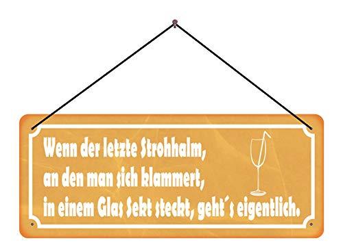 BlechschilderWelt Funschild Spruch Strohhalm Glas Sekt Trinken Schild mit Kordel Deko tin Sign