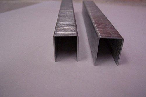 Agrafes type 80 21Ga (0,6) × 0,9 mm longueur 8 mm pour klammerpistole nova/80 16