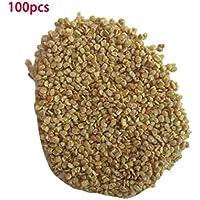 Una bolsa de semillas de baya de Goji Semillas de Lycium Barbarum, alta tasa de supervivencia Semillas de baya de Goji Lycium Barbarum Semillas de la planta de Wolfberry china para jardín en casa Balcón Granja