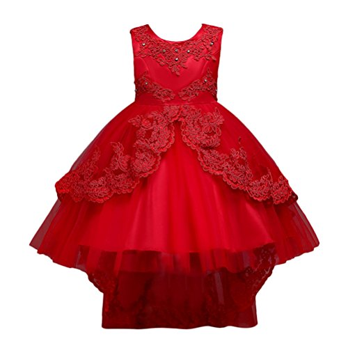 Zhhlinyuan Kids Mädchen Vintage Embroidery Flowers Wedding Brautjungfer Princess Pageant Party Dress Prom Ballkleid Multicolor (Prom Pageant Ballkleid)