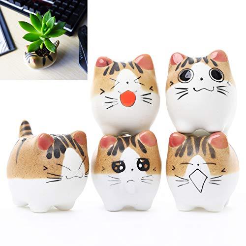 DeElf 5 Set Keramik-Suchkulentententöpfe Katze Mini Größe mit Drainage und 5 bunten Topf-Tablets, 4 kleine Pflanzwerkzeuge für Tierliebhaber Zuhause und Büro (Mini Tablet Ich)