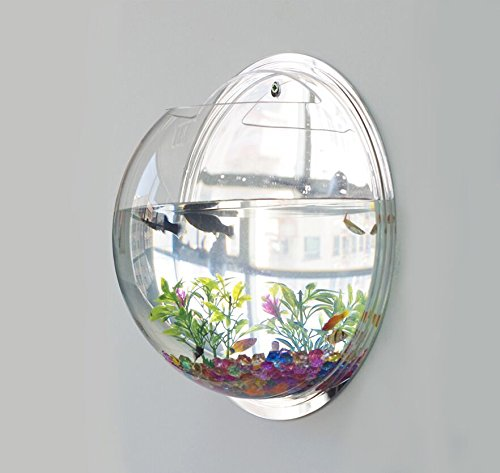1-x-fish-tank-wall-mounted-bowl-aquarium-hanging-plant-pot-plant-stones