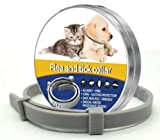 Star Quality Supplies Flea & Tick Collar. Grey silicone for cats and small