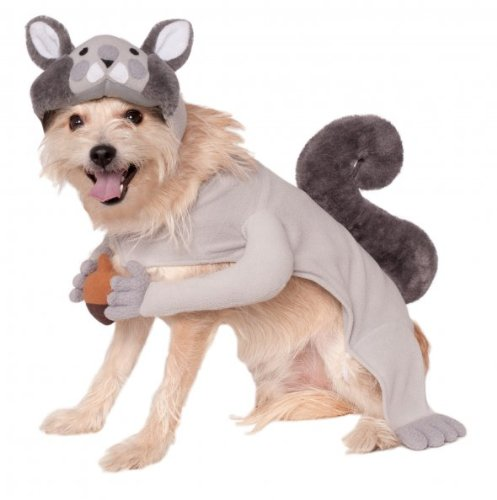 Rubies Costume Company Squirrel Pet Costume, Medium by Rubie's Costume Co (Viral Video Kostüme)