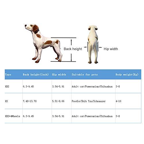 41s49vIulmL - Silla de ruedas para perros, Rehabilitación de patas traseras Discapacitados Perro asistido Caminan dos ruedas Silla de ruedas ajustable para mascotas para gatos adultos Perros pequeños Chihuahua de P