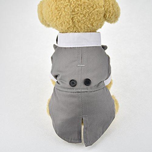 Süsse Haustier Hund Katze Hochzeit Smoking Kleidung Outfits Anzug mit Fliege für Hunde Garment Formale Party Hund Jacke Mantel Kleidung Kleiner Hund Kostüm T-Shirt (Hochzeit Smoking Hund)