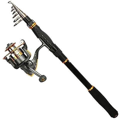 Goture Épée Spinning de canne à pêche Bobine de GT-S Combo