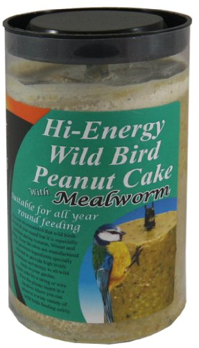 dawn-chorus-mealworm-peanut-cake-for-wild-birds-12-pack