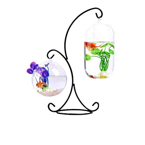 BEITAI Hängende Art Glasvase Aquarium Glas Aquarium Blume Pflanze Vase mit R-Typ Eisenrahmen große Melone und 12cm Ball für Dekor (Farbe : As shown) -