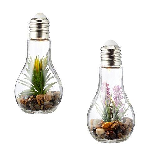2er Set Sukkulenten LED Glühbirne Glas B x H: 8x19cm Deko Lampe Kunstpflanze Grün Rosa Hängelampe