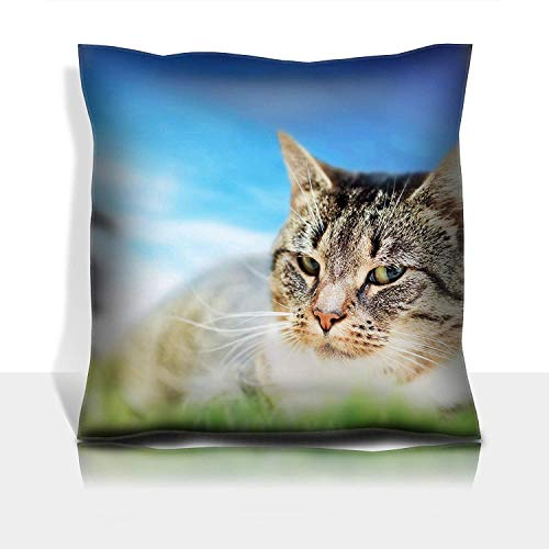 ton Satin Comfortable Decorative Soft Pillow Covers Protector Sofa 18x18 1 Pack Cute cat Lying on Green Spring Grass Sunny Day Colorful Vibrant Composite Image ()