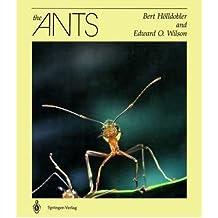 [(The Ants)] [Author: Bert Holldobler] published on (September, 1998)