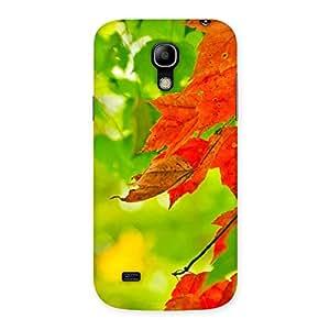 Cute Leaf Multicolor Back Case Cover for Galaxy S4 Mini