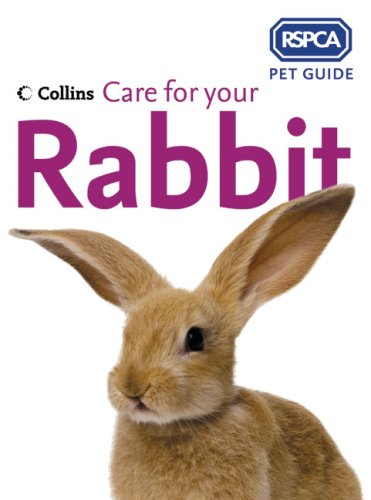care-for-your-rabbit-rspca-pet-guide