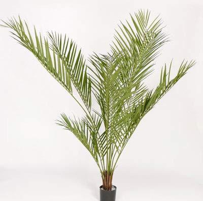 artplants Set 'Kunstpalme Areca + Gratis UV Schutz Spray' - Künstliche Palme Daisy, wetterfest, grün, 180 cm