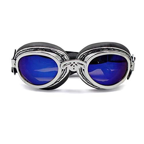 LEERAIN Hund Sonnenbrille Haustier Goggle Schutzbrillen Uv-Schutz Wasserdicht Winddicht Faltbar Hunde Katzen Brillen,Silver