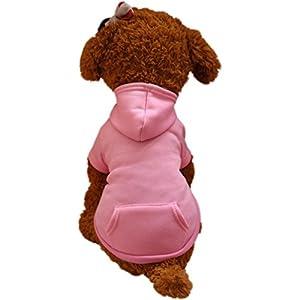 Angelof Vetement Chien/Chat Manteau A Capuche Chien Sweatshirt Avec Poche Habit Chauds Accessoire Chien Petite Taille Printemps Veste