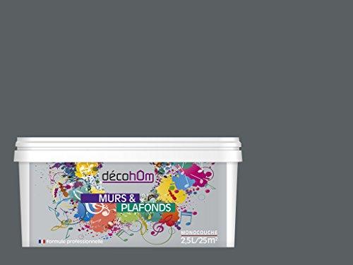 decohom-634154062333-peinture-murale-monocouche-25-l-mat-gris