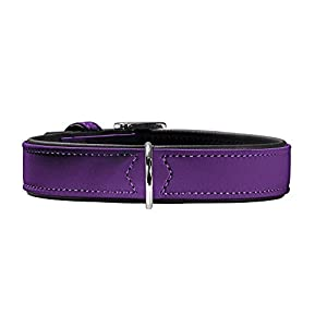 Hunter Softie Collar, X-Small, Violet