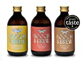 Booch & Brew Award Winning Vegan Kombucha - Mixed Case of 3 Mind Blowing Flavours   12 x 300ml Raw Unpasteurised Kombucha Drink with No Artificial Nasties   Non-Alcoholic Kombucha Tea Drink
