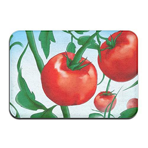 Pengyong Plante Tomates de graines en Caoutchouc pour Porche, Garage, Grand débit pour entrée de Jardin, Tapis Standard 60 x 40 cm