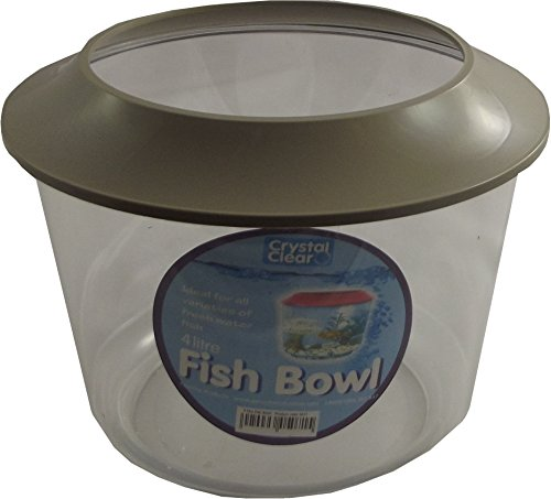 Goldfish Bowl 3